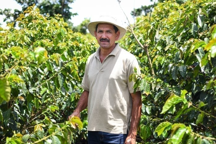 Coffee grower in Naranjo valley.